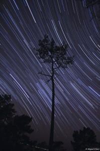 2009 Meteor Shower